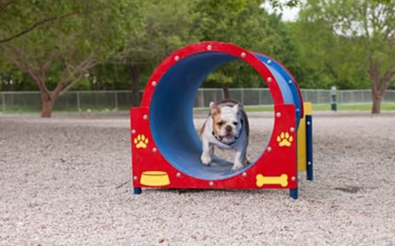 All About Play - playgroundpros - Site Amenities - Top Section - Dog On It Parks Photo 3